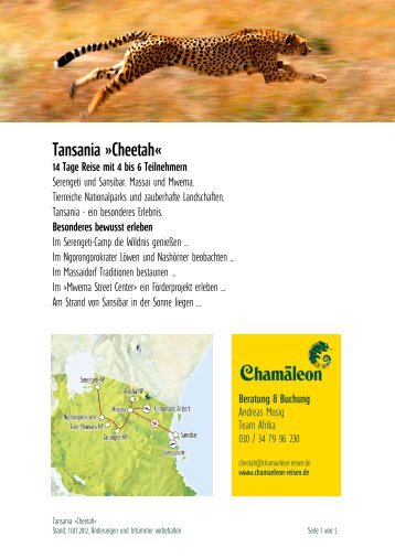 Tansania »cheetah«