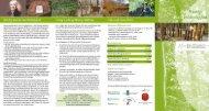 Flyer Hartig-Walderlebnispfad web