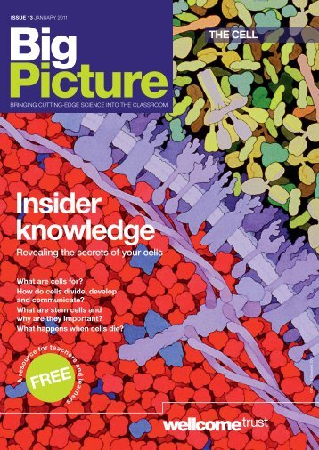 Big Picture: The Cell - Wellcome Trust