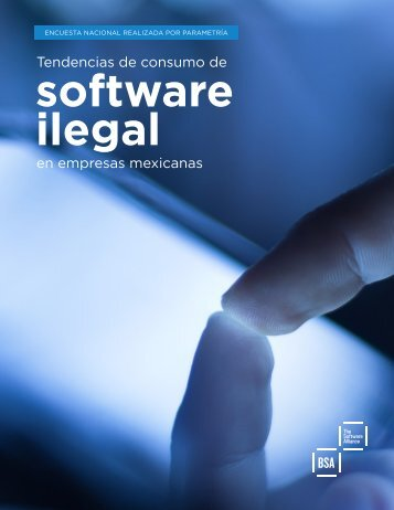 Software ilegal en las empresas 2014