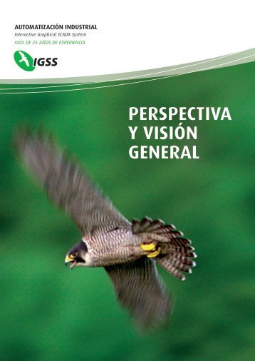 perspectiva y visión general automatización industrial