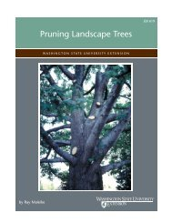 Pruning Landscape Trees - Laels Moon Garden Nursery
