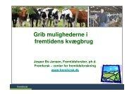 Kvægkongres Herning - Fremtidsforskeren Jesper Bo Jensen