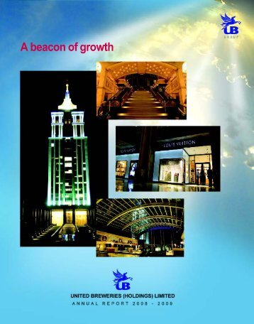 Annual Report 2008-2009 - UB Group