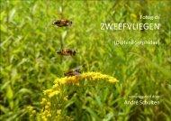fotogids_Syrphidae