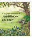 En mi jardín trasero - Sylvan Dell Publishing - Page 7