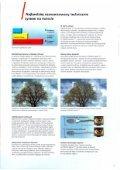 Page 1 Page 2 Wydajnoát': i zwrot inwestycji Obecnie. W czasie ... - Page 3