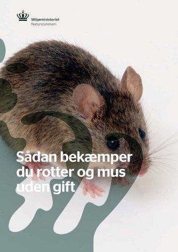 Sådan bekæmper du rotter og mus uden gift - Favrskov Kommune