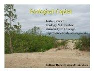 Ecological Capital - Center for International Studies - University of ...