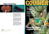 Fusarium blight – a global problem