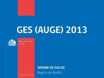 GES (AUGE) 2013 - SEREMI de Salud Región del Biobío.