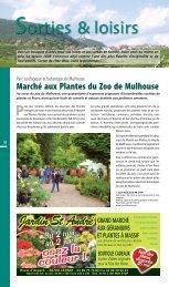 Jardin St André - JDS.fr