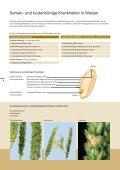 Celest Trio Informationsbroschüre - Syngenta - Page 4