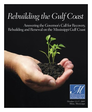 Answering the Governor's Call for Recovery ... - The Town Paper