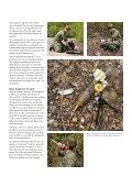 Swiss deminers - Saab - Page 3