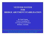 Bridge Abutments stabilized with VS