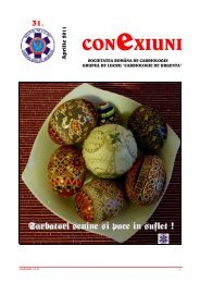 Newsletter nr. 31 - Cardioportal