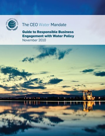 Guide to Responsible Business Engagement with Water Policy ...