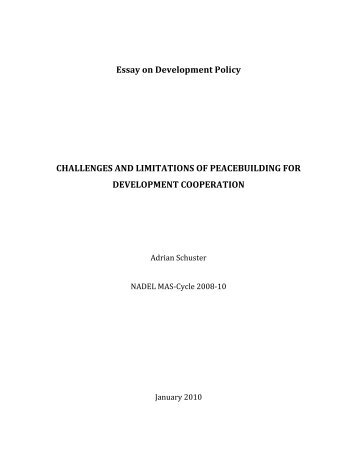 Essay on Development Policy CHALLENGES AND ... - nadel