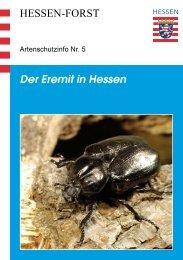 Der Eremit in Hessen HESSEN-FORST - Landesbetrieb Hessen-Forst