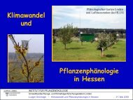 Klimawandel und Pflanzenphänologie - Hessisches Landesamt für ...