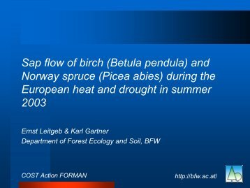 Folie 1 - Forest Management and the Water Cycle (FORMAN)