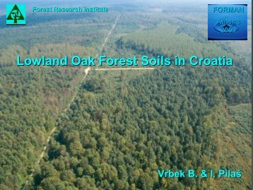 Klasifikacija tala - Forest Management and the Water Cycle (FORMAN)