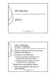 Wu Xing Xue