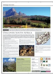 Discover South Africa - Terre d'Afrique