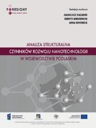 Analiza strukturalna czynników rozwoju nanotechnologii w ...