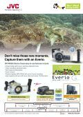 coral - Emirates Diving Association - Page 2