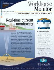 Workhorse Monitor ADCP 300 kHz tecnical.pdf