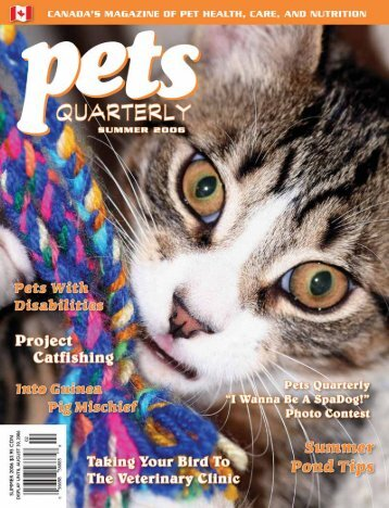 Pets Quarterly Summer 2006 - Kjchase.com
