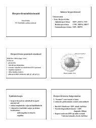 Herpesviirused - Perearstikeskus.ee