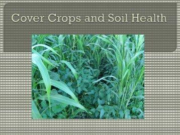 Cover Crops & Soil Health