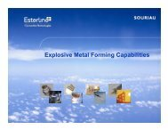 Explosive Metal Forming Capabilities - PA&E