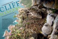 Cliff hangers: a Peregrine diary