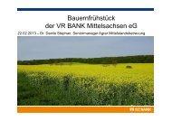 Dr. Danilo Stephan - VR-Bank Mittelsachsen eG