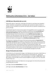 Weihnachts-Lichterketten & Co – die Fakten - WWF Schweiz