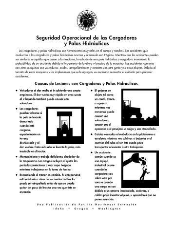 Seguridad Operacional de las Cargadoras y Palas Hidráulicas