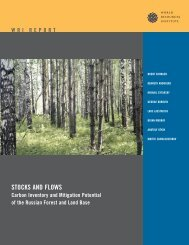 STOCKS AND FLOWS - World Resources Institute