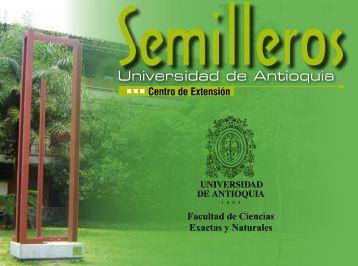 Portafolio semillero 2013-1.pdf - Matemáticas - Universidad de ...
