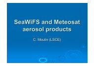 SeaWiFS and Meteosat aerosol products - AeroCom