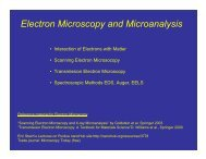 Electron Microscopy and Microanalysis