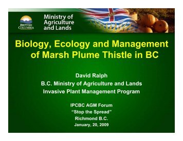Biology, Ecology and Management of Marsh Plume Thistle in BC