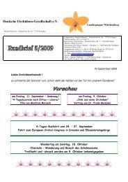 5/2009 - DOG Landesgruppe Württemberg