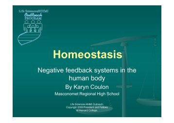 Homeostasis - Life Sciences Outreach Program