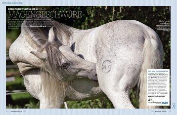 erkrankungen a bis zteil - Mein Pferd
