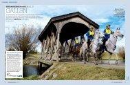 GALLEN - Mein Pferd