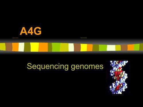 Sequencing genomes